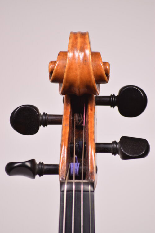 Viola Scroll front
